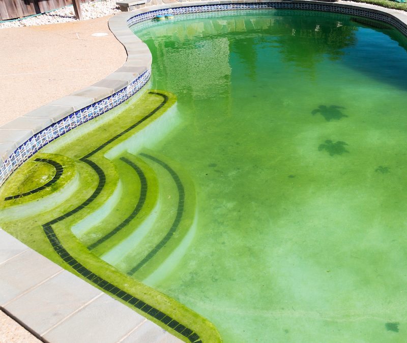 Common Pool Filter Problems – How to Solve Them