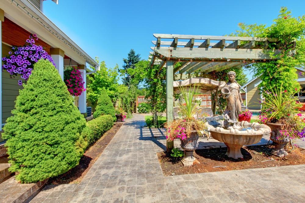 luxurious backyard living