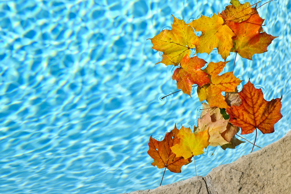 Tips For Closing Your Swimming Pool For The Season