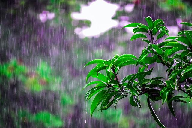 Rain Rain Go Away! After Storm Poolcare